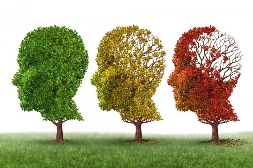 fazat e sëmundjes së alzheimerit