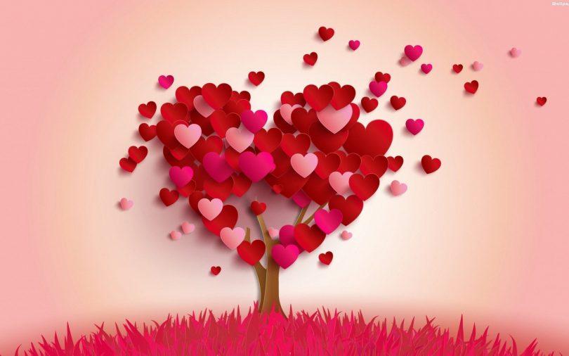 dashurinë