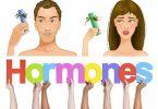 mosbalancimi i hormoneve